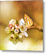 Blooms And Butterflies Metal Print