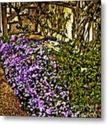 Blooms Beside The Steps Metal Print