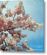 Blossom Sky Metal Print