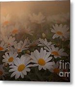 Blossom Metal Print by Sylvia  Niklasson