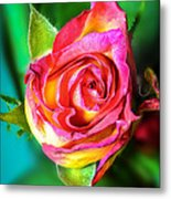Blossoming Life....2 Metal Print