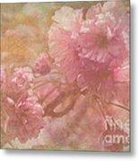 Blossoms Splender Metal Print