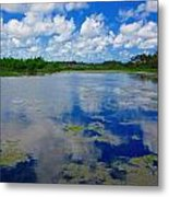 Blue And Green Cay Metal Print