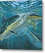 Blue And Mahi Mahi Underwater Metal Print by Terry Fox