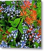 Blue And Red Flowers In Kuekenhof Flower Park-netherlands Metal Print