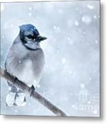 Blue And Snowy Metal Print