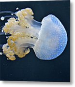 Blue And White Underwater Living Sea Metal Print