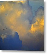 Blue And Yellow Clouds At Sunset With Birds Usa Metal Print