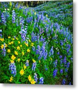 Blue And Yellow Hillside Metal Print