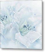 Blue Azalea Flowers Metal Print
