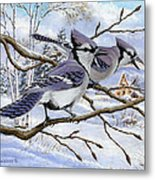 Blue Bandits Winter Afternoon Metal Print