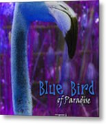 Blue Bird Of Paradise - The Fuzz Metal Print