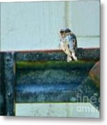 Blue Bird Side View Metal Print