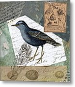 Blue Bird Study Metal Print