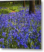 Blue Blue Bells Metal Print