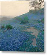 Blue Bonnet Field In San Antonio Metal Print