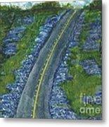 Blue Bonnet Road Metal Print
