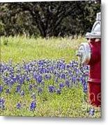 Blue Bonnets Fire Hydrant V2 Metal Print