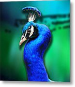 Blue Boy 2 Metal Print