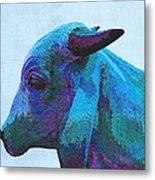 Blue Brahma Metal Print