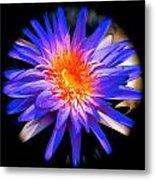 Blue Burst Lily Metal Print