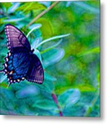 Blue Butterfly Fantasy Metal Print