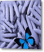 Blue Butterfly With Gary Hands Metal Print by Garry Gay
