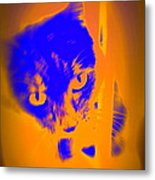 The Blue Cat Is Watching You From Behind The Barres  Metal Print