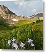 Handie's Peak And Blue Columbine On A Summer Morning Metal Print