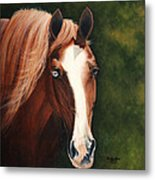Blue Eyed Bum Metal Print