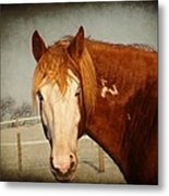 Blue Eyed Paint Metal Print