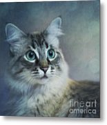 Blue Eyed Queen Metal Print