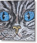 Blue Eyed Stripped Cat Metal Print