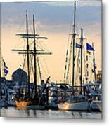Blue Flags Metal Print