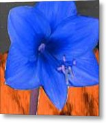 Blue Flower In The Fall At Night Metal Print