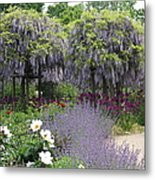 Blue Flowergarden With Wisteria Metal Print