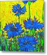 Blue Flowers - Wild Cornflowers In Sunlight  Metal Print