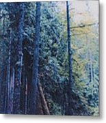 Blue Forest By Jrr Metal Print