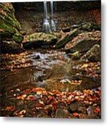 Blue Hen Falls In Autumn Metal Print