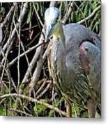 Blue Heron Greeting Metal Print