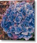 Blue Hydrangea Thank You Metal Print