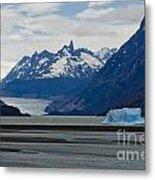Blue Icebergs On Grey Lake In Patagonia Metal Print