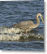 Blue In The Surg Metal Print