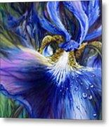 Blue Iris Metal Print by Lynette Yencho