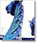 Blue Kelpie Metal Print