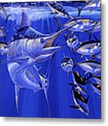 Blue Marlin Round Up Off0031 Metal Print by Carey Chen