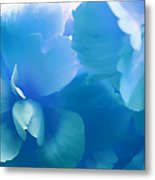 Blue Melody Begonia Floral Metal Print by Jennie Marie Schell