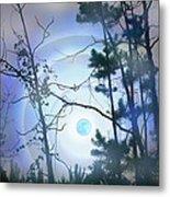 Blue Moonlight Metal Print