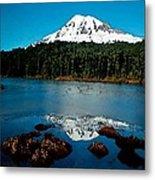 Blue Mountain Metal Print by Cole Black