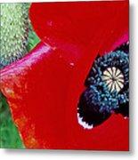 Blue Opium Metal Print